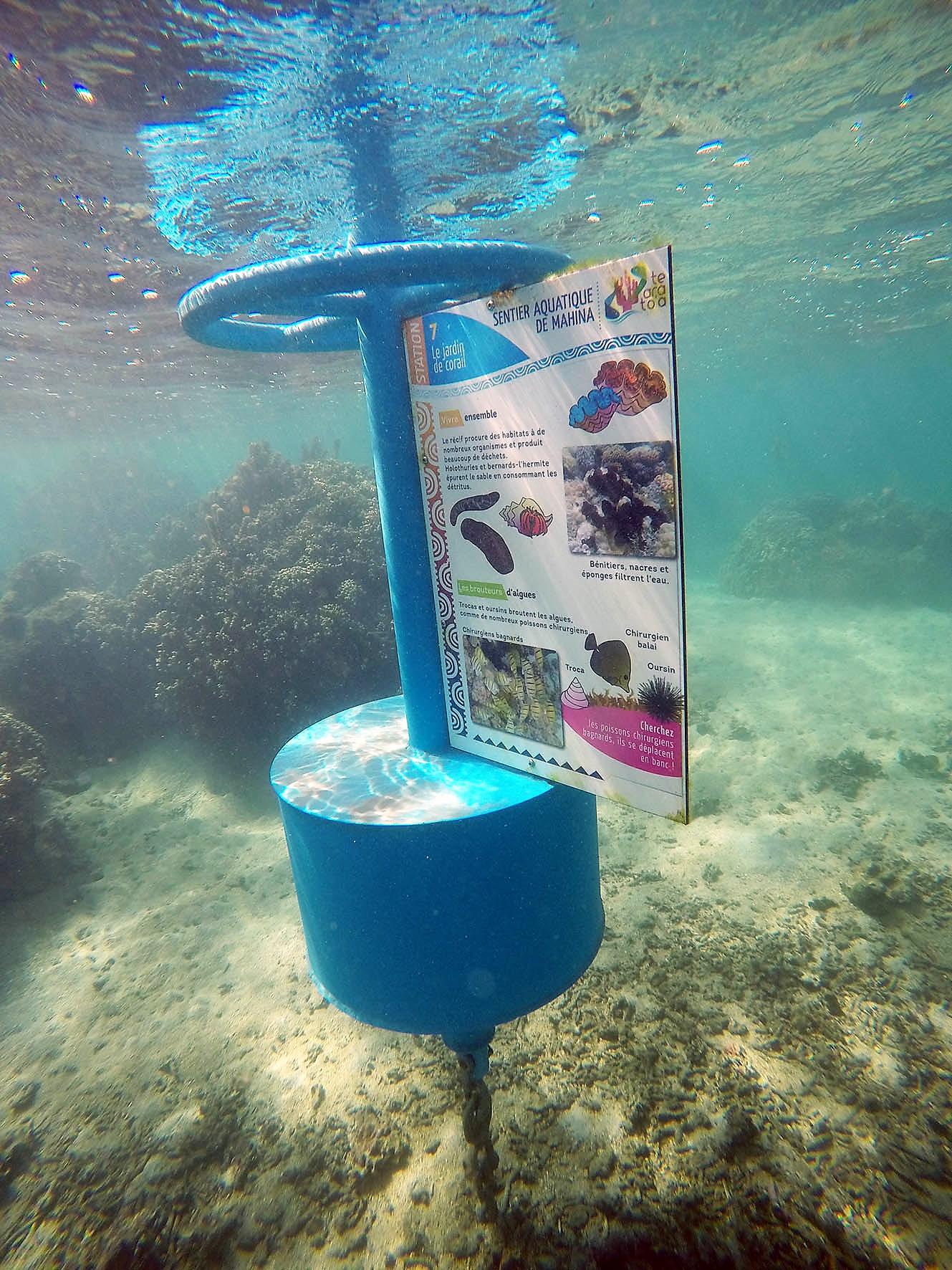 HPL parcours aquatique